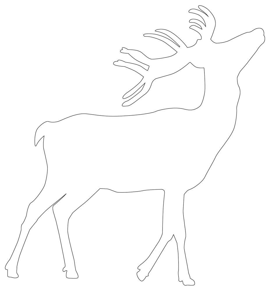 Deer Outline 10 Outlines Of Exciting Printable Deers Free