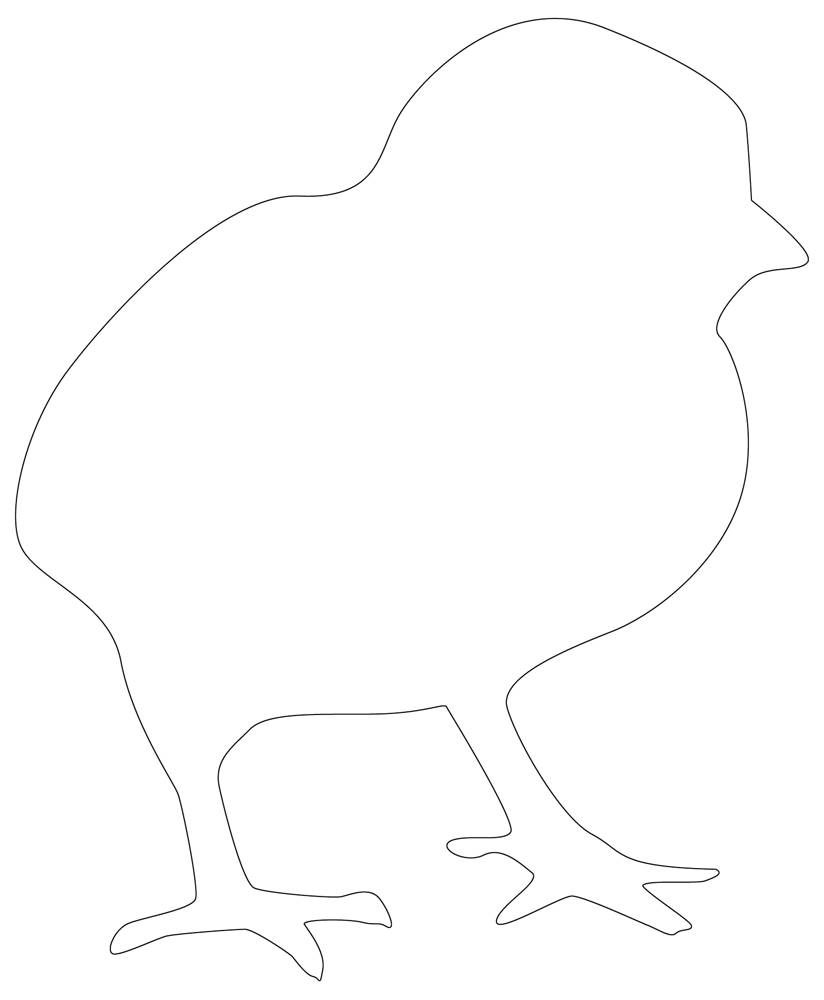 Chicken Baby Outline - Drawing in Black & White