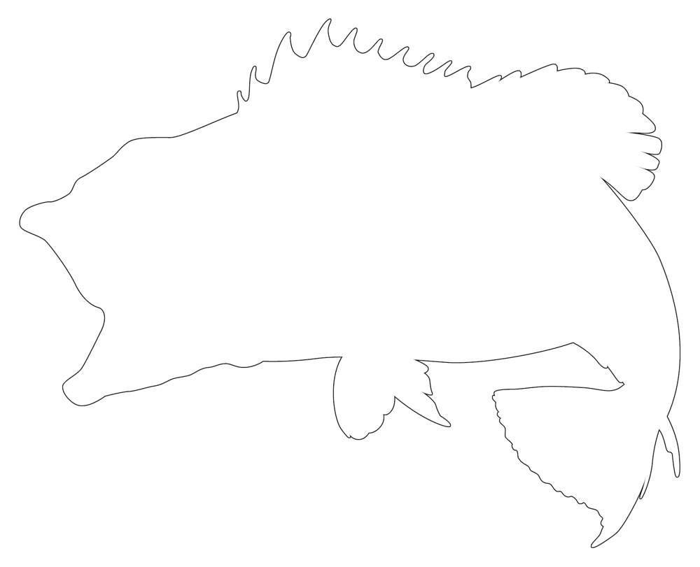 Bass Fish Outline Clever Fish Line Drawing