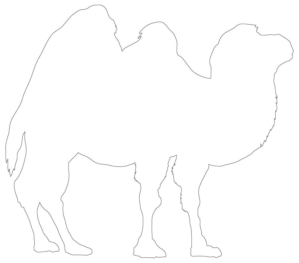 Camel Outline