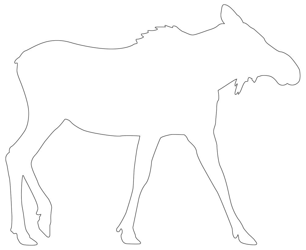 Moose 01 Outline