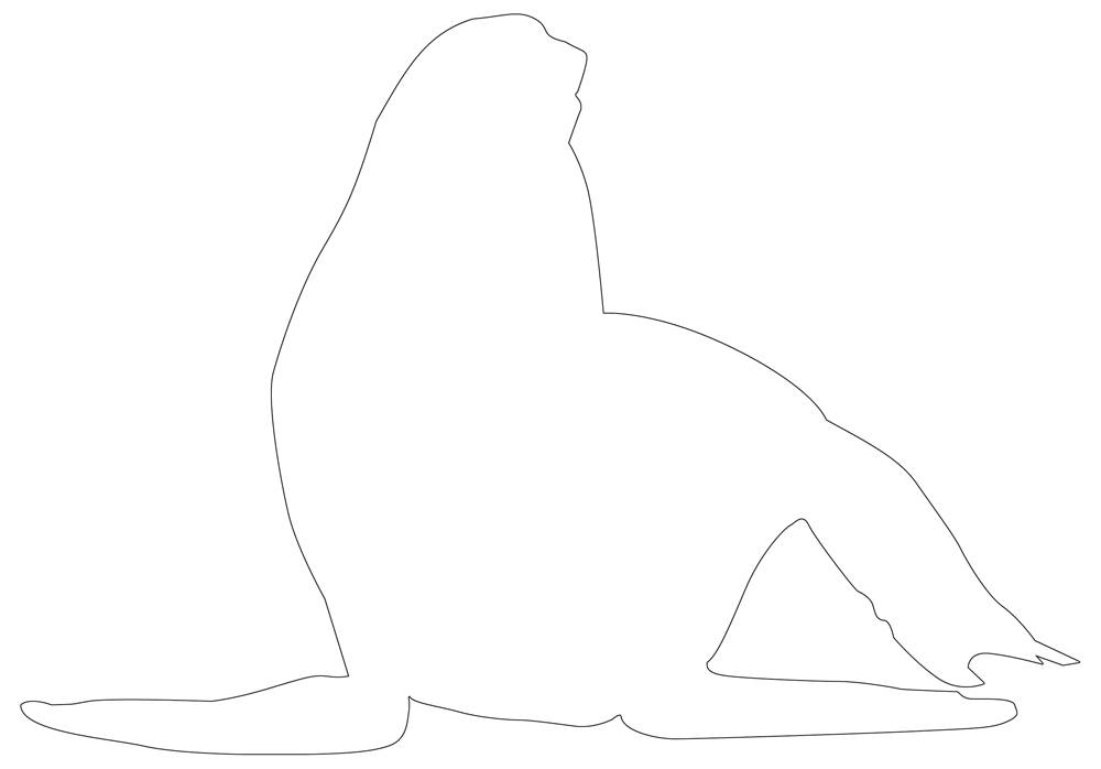 Seal Outline