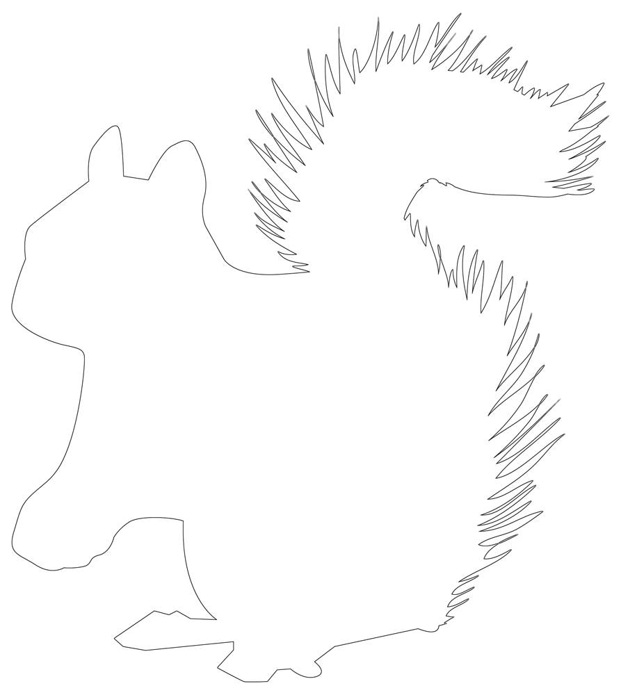 Squirrel Outline