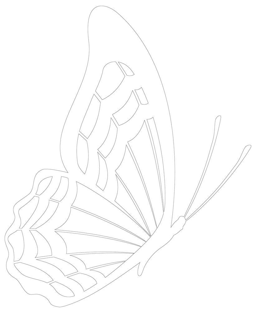 Butterfly Outline | Black & White Line Art, Side View