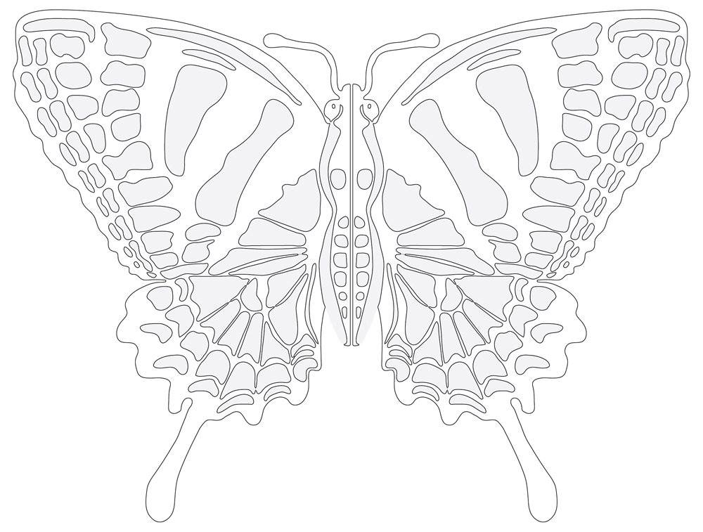 Printable Butterfly, Vibrant Wings, Black & White Outline