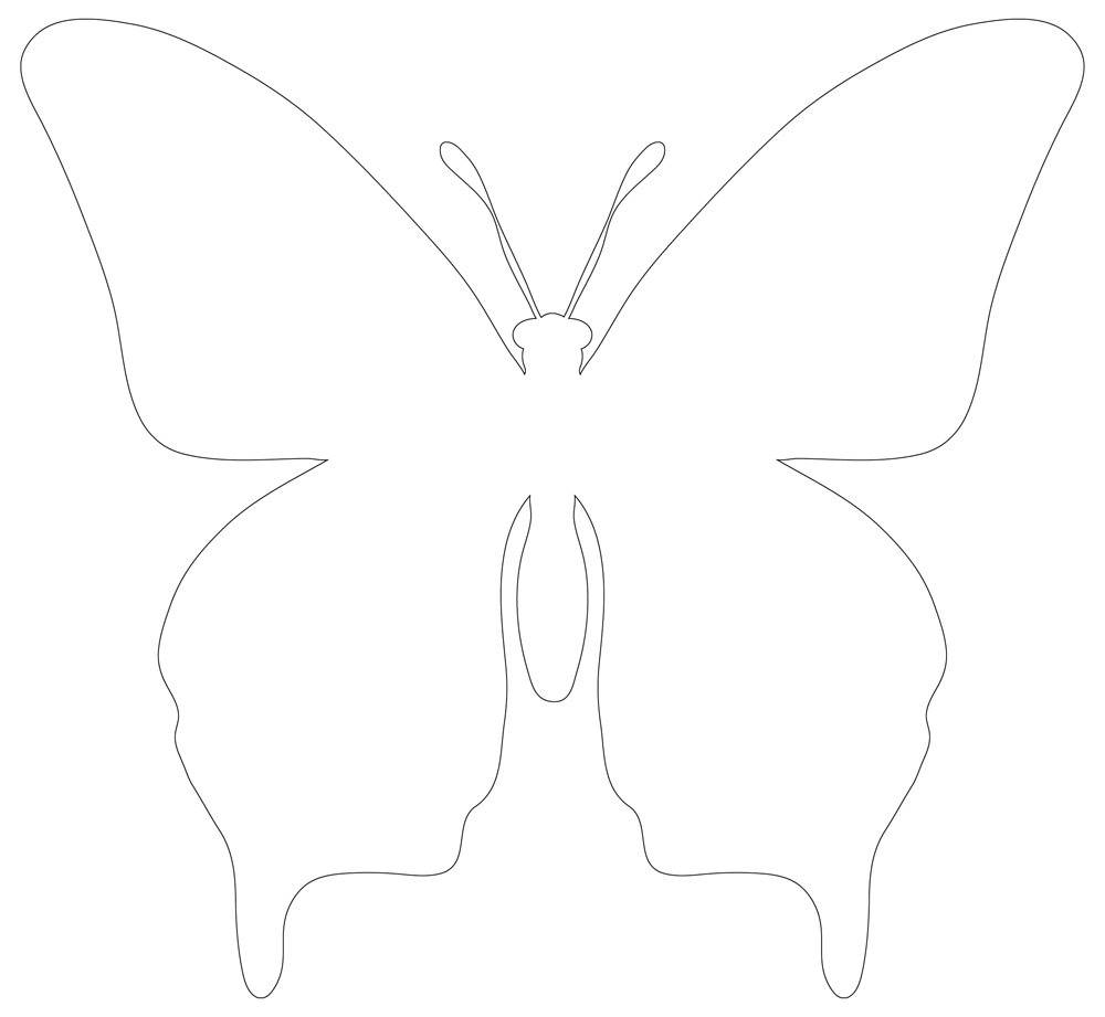 Butterfly Cut Out with Wings Open, Outline Form