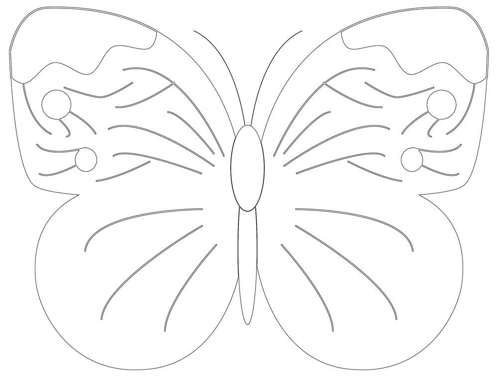 Butterfly Shapes, Wings Expanded Outline